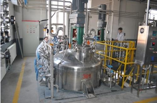 5T发酵罐系统2套