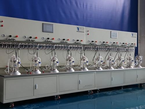 十联体玻璃生物反应器