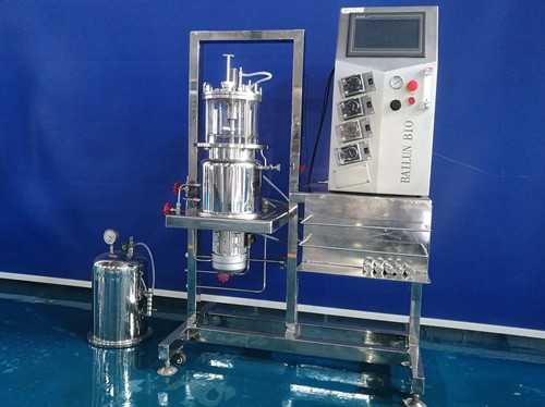 原位灭菌磁力搅拌玻璃发酵罐(立式)