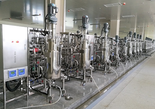 多联不锈钢发酵罐(10L50L150L500L)