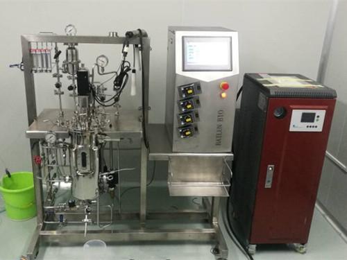 不锈钢发酵罐(10L-15L)