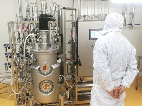 哺乳细胞反应器(不锈钢)