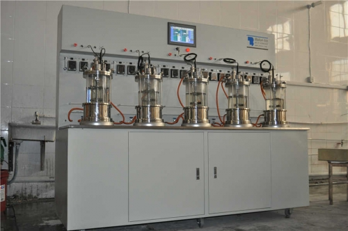 Five conjoined  glass fermenter|bioreactor