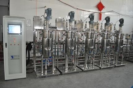 50L five conjoined fermenters bioreactors