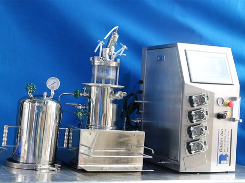 Glass fermenters (Desktop sterilized in situ magnetic stirring)