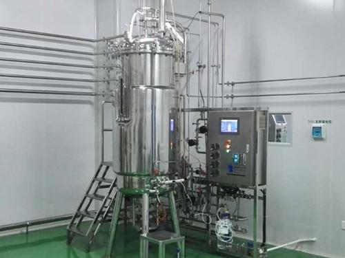 500 l fermenter (under the bottom of the mechanical agitation)