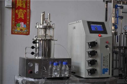 Fermentadores de vidrio (Escritorio esterilizado en agitación magnética situ)