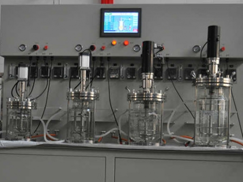 1L2L3L5L fermentador de vidrio de múltiples etapas
