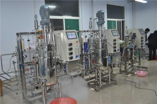 Dos fermentador bivalente (10L50L50L)