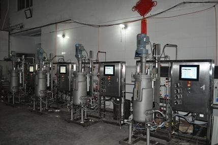 Cuádruple fermentador alta máquina (50L sandblasting)