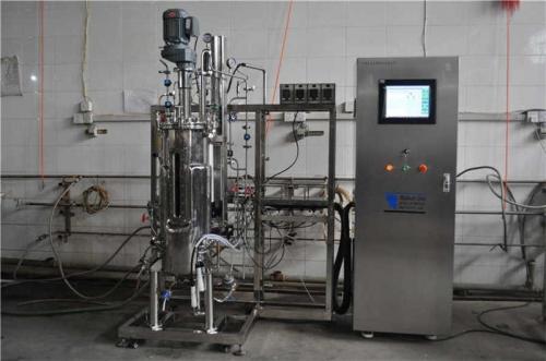 Fermentador esterilizado automática (50L-800L)