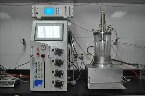 El desalojamiento fermentador esterilizado (agitación magnética)