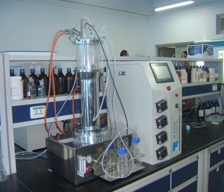 Fermentador de vidrio puente aéreo (fuera de las instalaciones de esterilización)